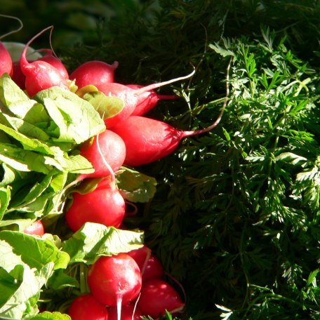 Gemüse von einem Marktstand, © Kulturamt der Stadt Miesbach